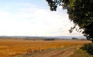 Die Felder sind schon abgemäht, weit geht der  Blick hinaus. Der Rasen ist noch frisch und grün vor jedem Bauernhaus